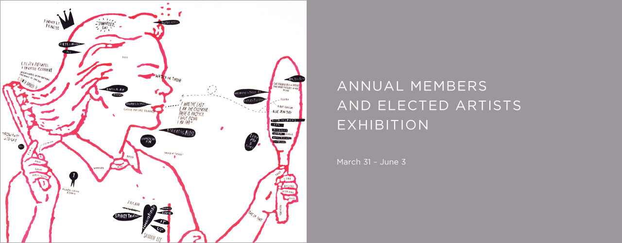 Annual Members and Elected Artists Exhibition 2017 Hero