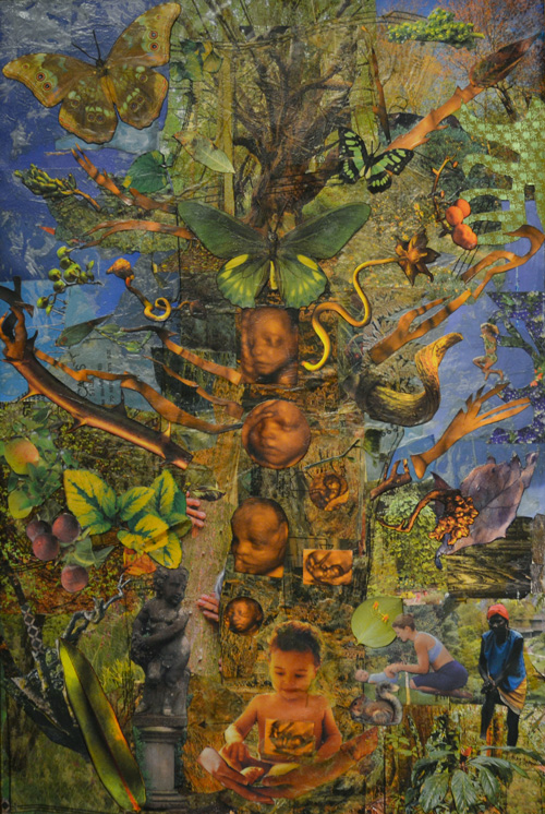 Hillary Opperman, Tree of Life
