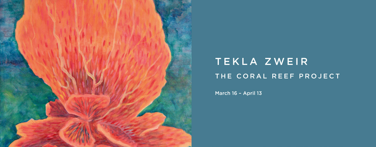 Tekla Zweir: The Coral Reef Project
